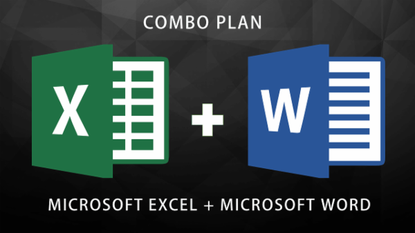 COMBO PLAN - MS Excel Expert + MS Word Expert cover
